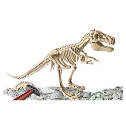 Archéo Ludic squelette T-Rex géant