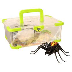 Wild Pets-Terrarium avec araignée