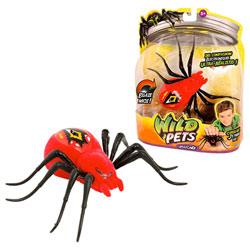 Araignée Interactive Rouge