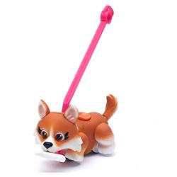 Pet Parade chien Corgi