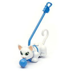 Pet parade Chat blanc poil court