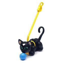 Pet parade Chat noir poil court