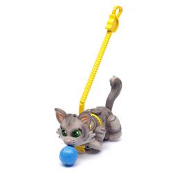Pet parade Chat gris de Sibérie