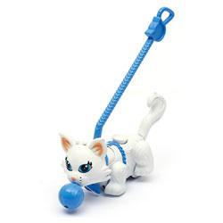 Pet parade Chat persan blanc