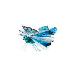 Lily Papillon Zinnia