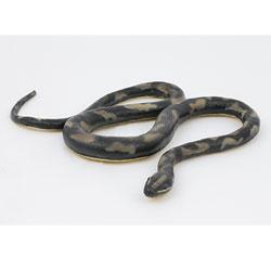 Serpent en plastique 60 cm
