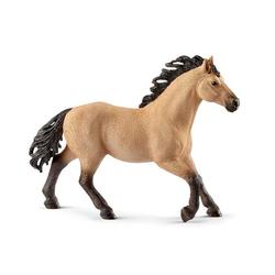 Étalon Quarter horse