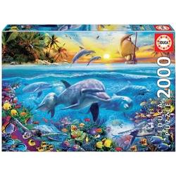 Puzzle de 2000 pièces famille de dauphins