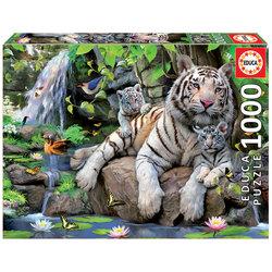Puzzle Tigres Blancs du Bengale 1000 pièces