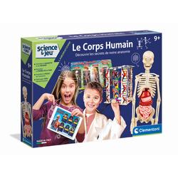 Le corps humain