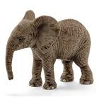 Éléphanteau afrique