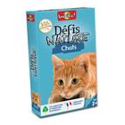Jeu de cartes défis nature chats