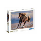 Puzzle 1000 pièces High Quality cheval