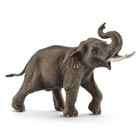 Eléphant d'Asie mâle