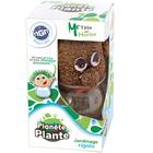 Kit plante Mr Tête en herbe