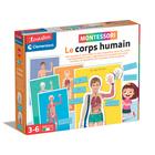 Montessori le corps humain
