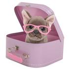 Peluche chien Shady Studio Pets avec valise
