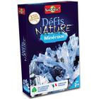 Défis Nature minéraux