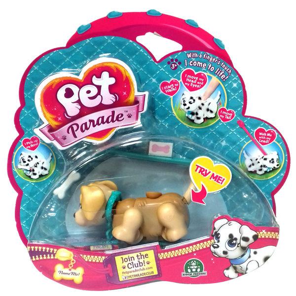 Pet Parade-Chien labrador
