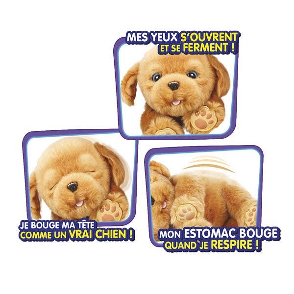 Little Live Pets - Chien Snuggle Puppy